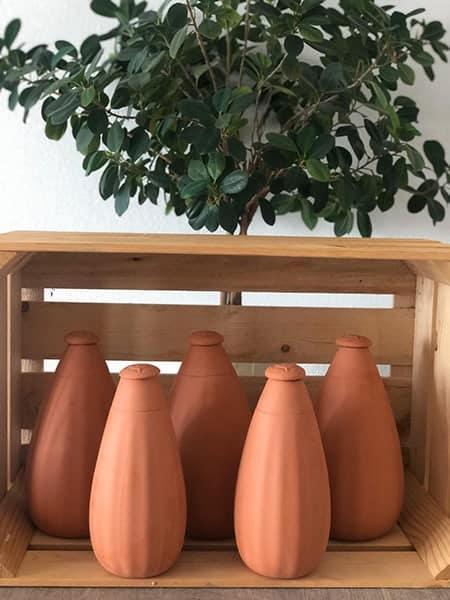 5 ollas debout, dans un cagot en bois, avec en fond une plante verte.