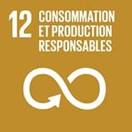 Objectif de développement durable n°12 : Consommation & Production responsables