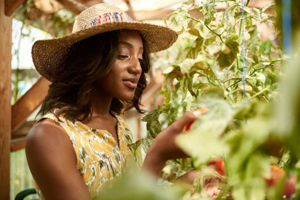 Comment rendre mon jardin plus écologique