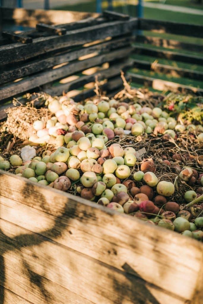 bac à compost remplit de pommes et autres déchets compostables