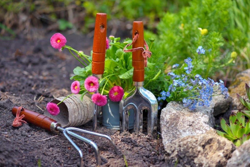 accessoires de jardin plantés dans la terre à côté de fleurs