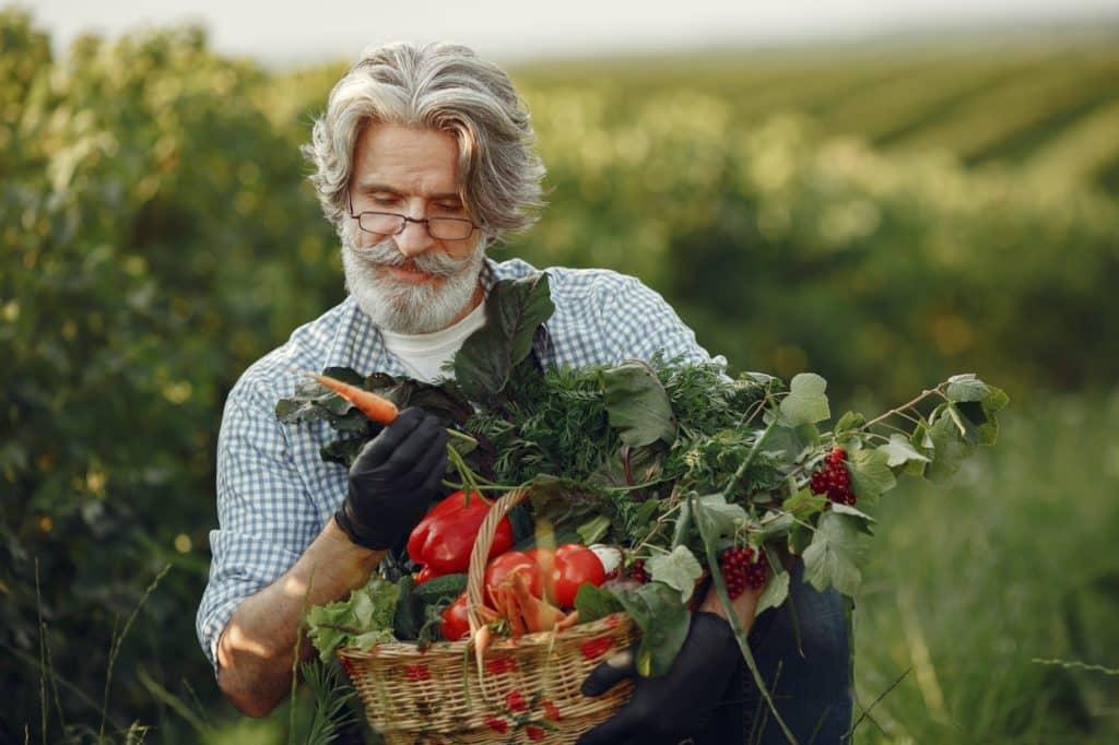 Comment débuter en permaculture ?