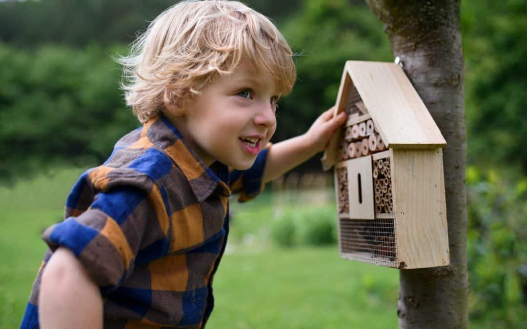 Lutter contre les parasites avec une maison à insectes
