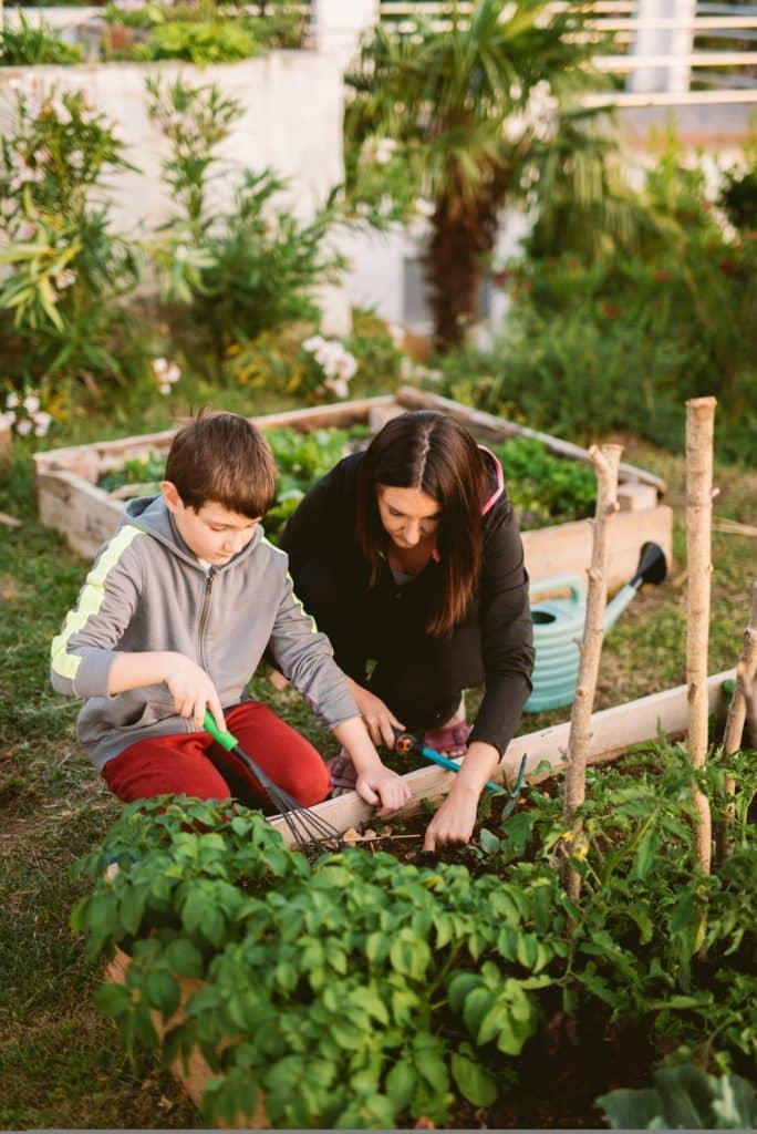 creer jardin permaculture