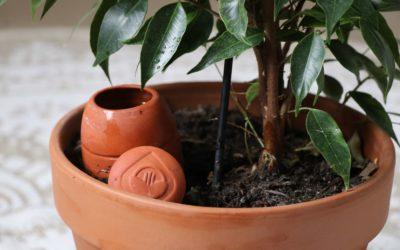 Fabriquer ses oyas maison : LA méthode pour un arrosage écologique !