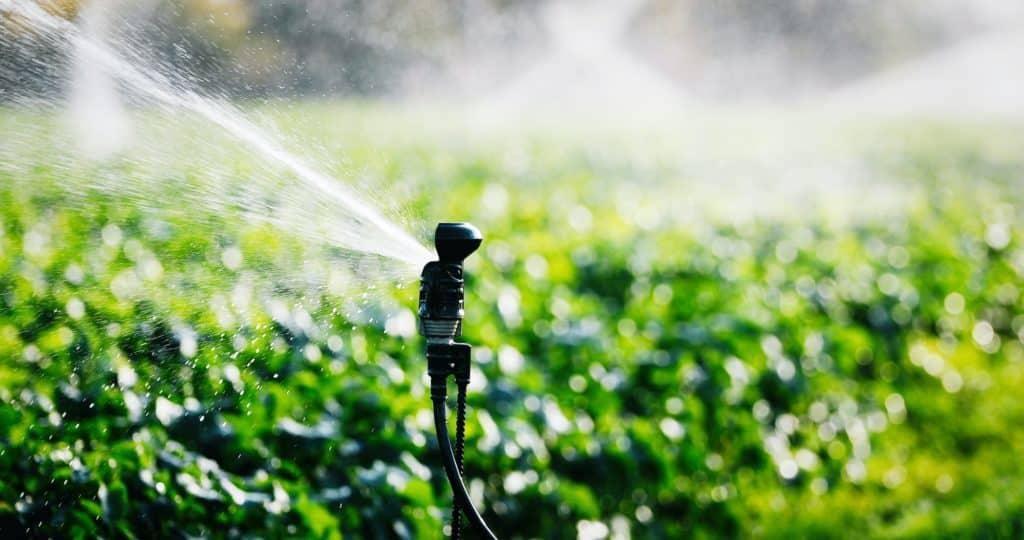 diffuseur d'eau classique en fonctionnement