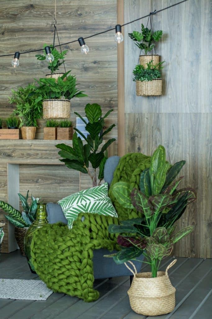 pièce pleine de plantes et plantes suspendues