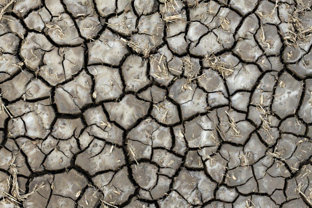 terre asséchée